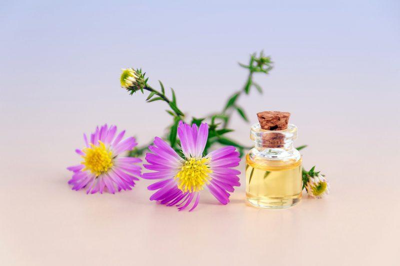 Jakie nuty zapachowe znajdują się w perfumach?